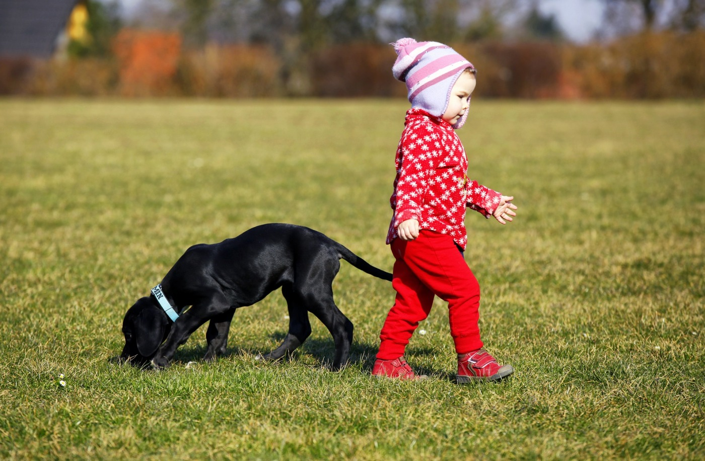 child to grow up with family pet