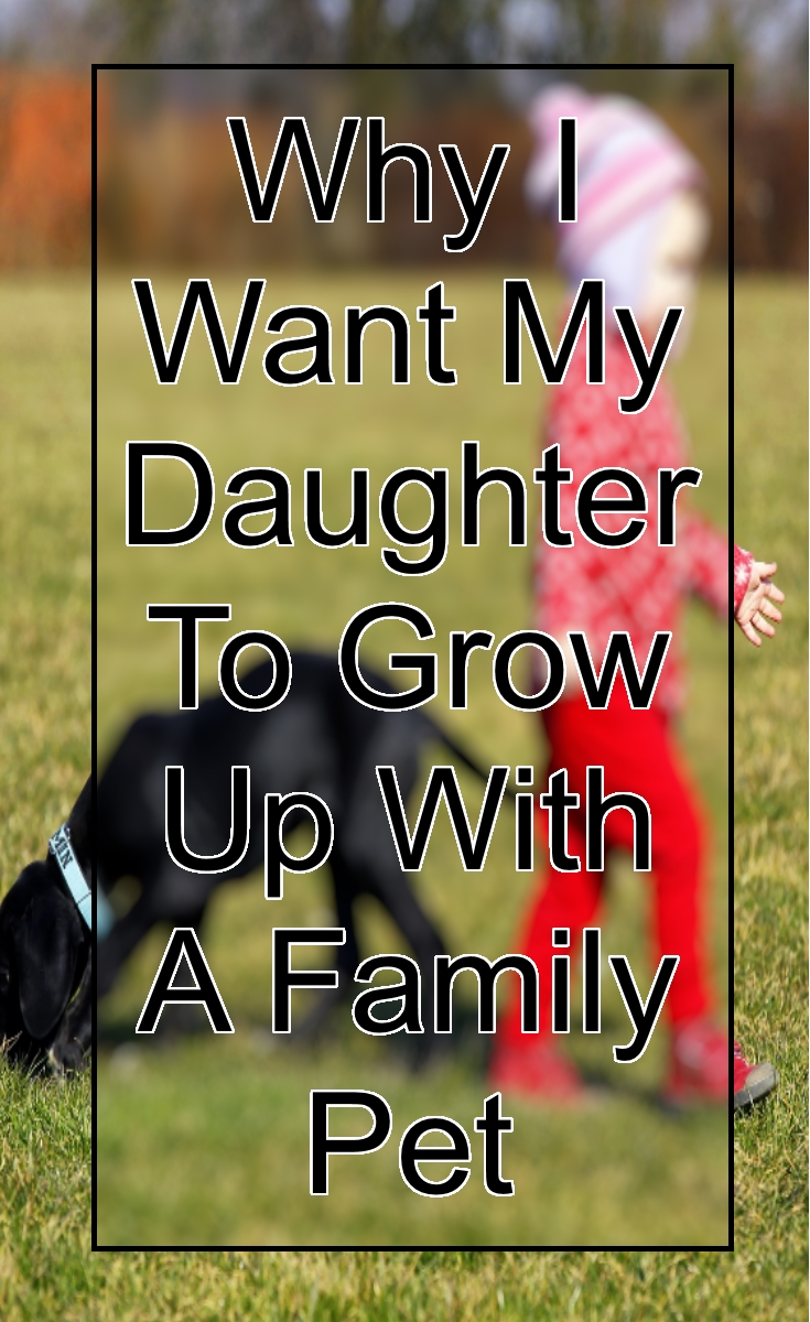 why-i-want-my-child-to-grow-up-with-a-family-pet