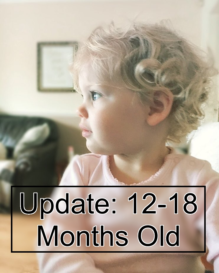 ivy-12-18-month-update
